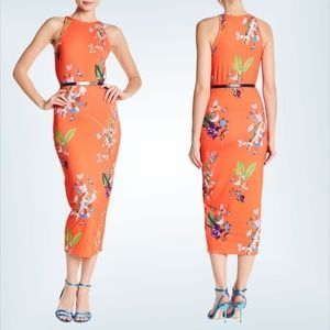 NEW Ted Baker Joelia Bodycon Floral Midi Dress